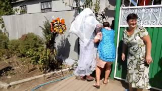 Свадьба в Александровке