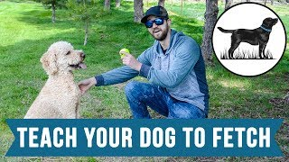 Stevin John - How To Teach Your Dog To Fetch