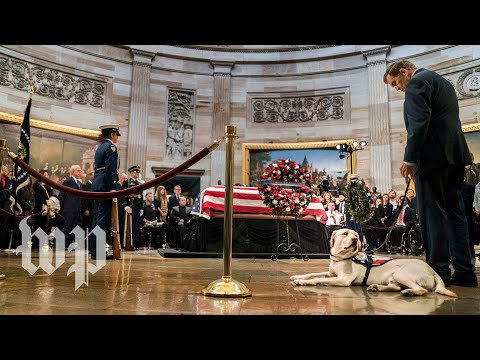 Bushs service dog Sully visits his coffin at the Capitol