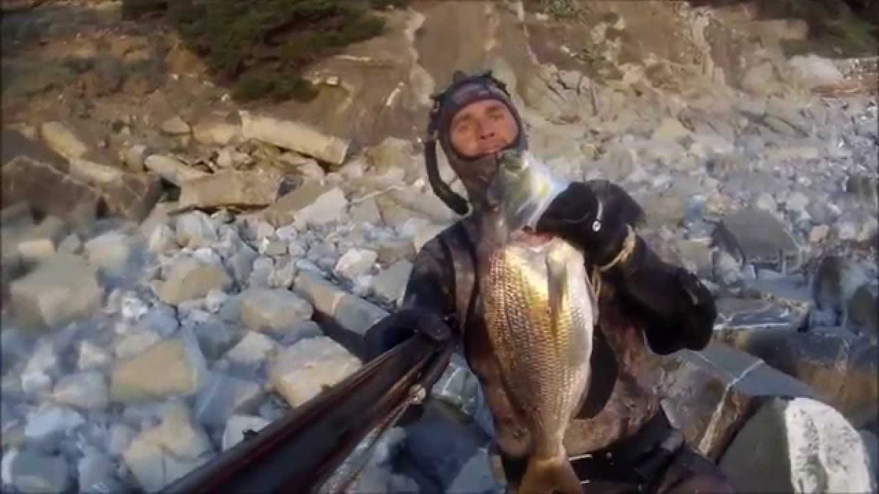 Cause per pesca invernale di imax