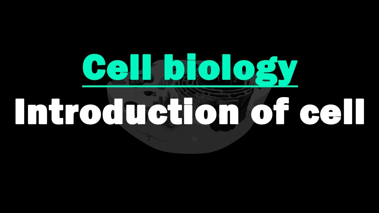 Introduction To Cell
