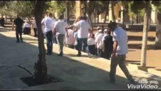 بالفيديو: عشرات المستوطنين يقتحمون المسجد الأقصى