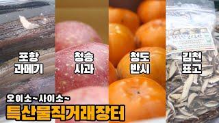 [오이소사이소] 경상북도 특산물은 못참지!