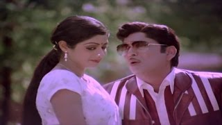 Panchami Poota Manchidhani Video Song || Sriranganeetulu Movie || ANR,Sridevi