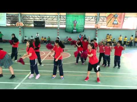 MS Red Team