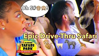 Hilarious Husband and Wife Drive-Thru Safari Adventure (Extremely Funny)