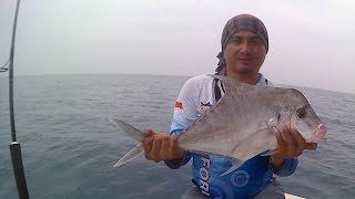 (0.04 MB) 2 Umpan mancing Dasaran paling ampuh ( The best live baits for Bottom fishing ) Mp3