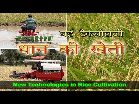 New Technologies In Rice Cultivation | जानिए धान की खेती में नई टैकनोलजी | Rice Cultivation In India