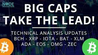 Large Caps Lead the Way Higher! Technical Analysis update for BCH XRP IOTA BAT and more