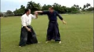 Artes Marciales: Aikido