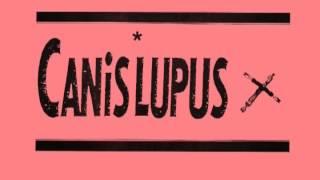 CANIS LUPUS - 天使@C-CITY 30th,Mar,1990