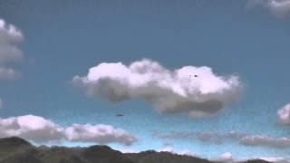 空撮機を撮影! TBS DISCOVERY FPV&SniperⅡ