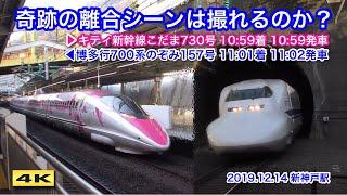 山陽直通700系のぞみとキティ新幹線の離合シーンは撮影できるのか !!? 新神戸 2019.12.14【4K】