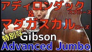 特別仕様 アディロンダック×マダガスカルローズ仕様【Gibson Advanced Jumbo 2010】Custom Shop オットリーヤ