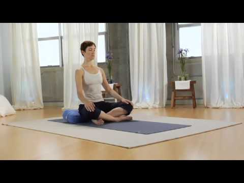 Viniyoga Therapy for Anxiety DVD Practice Sample 1