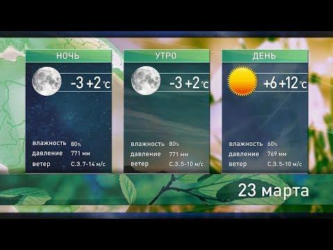 Прогноз погоды на 23 и 24 марта: в субботу до +15°С, а в воскресенье дожди и порывистый ветер