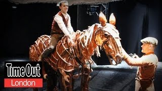 Behind the scenes at War Horse  | Dressing Room Confessions
