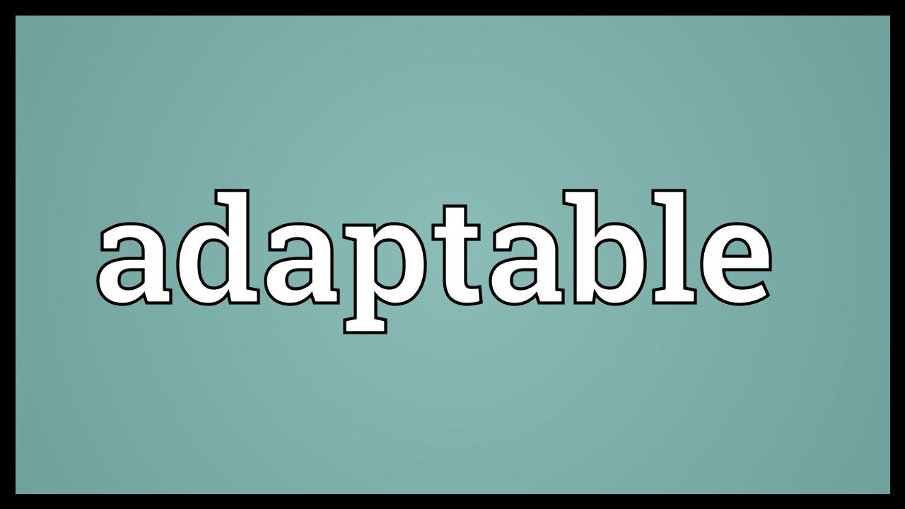 adaptable meaning youtube