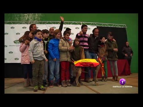 Semifinal y Final del Campeonato Nacional de Galgos 2015