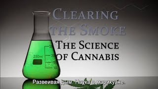 Развеивая дым: наука о марихуане (RUS SUB) (2011)(Clearing the Smoke: The Science of Cannabis. 2011. США. Документальный фильм, снятый на Montana PBS (PBS - американская некоммерческая..., 2013-10-14T16:31:19.000Z)