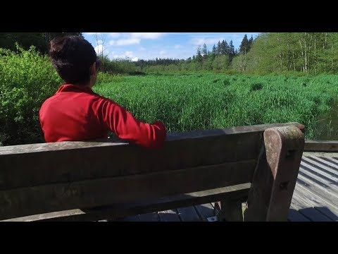 Regional Parks Protect Metro Vancouver's Natural Areas