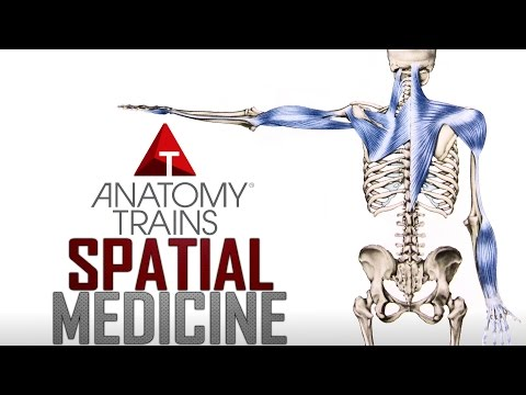 Thomas Myers - Spatial Medicine and Aging