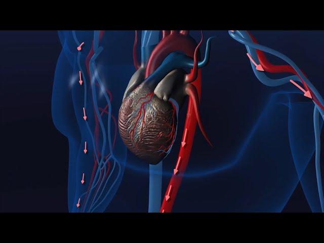 Minimally Invasive Procedures for PAD