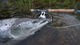 Atlantic Salmon in Belousikha river, Kola / Ловля семги в реке Белоусиха, Кольский п-ов.