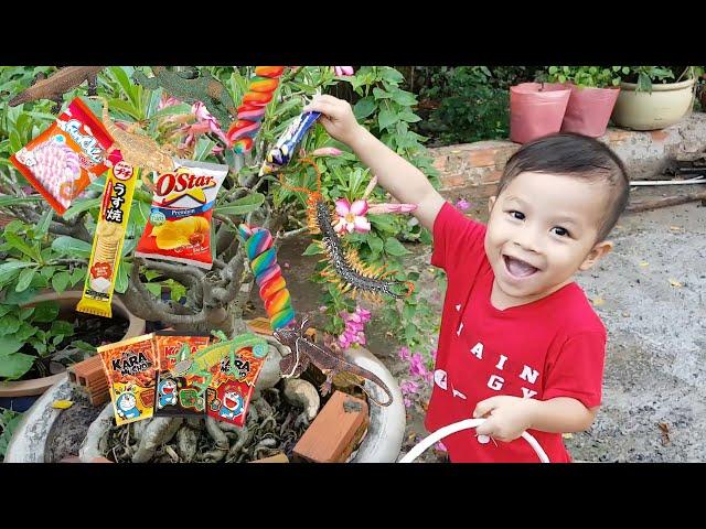 Bạn Ken Trong Sân Chơi - Trò Chơi Cá Vàng Phát Sáng ❤ ChiChi ToysReview TV ❤ Đồ Chơi Doli Fun Song