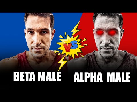 how-to-become-a-more-dominant-man---beta-vs.-alpha-male