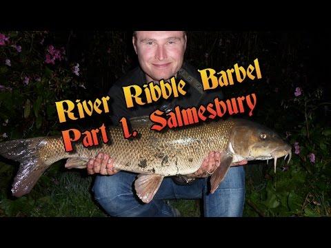 River Ribble Barbel Part 1. Salmesbury