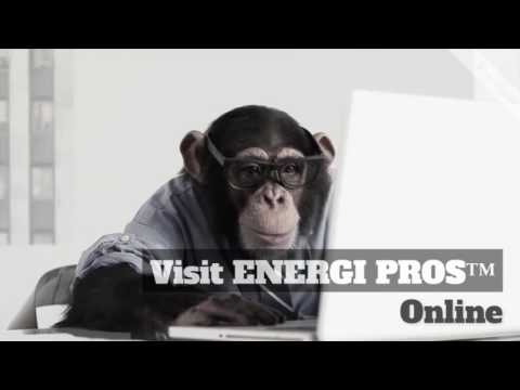 ENERGI PROS™   Stop Monkeying Around with the Electric Companies