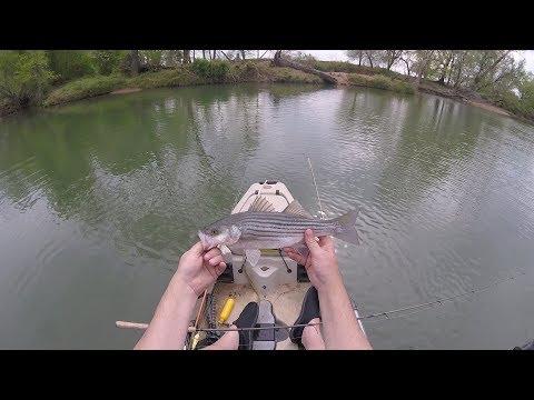 Eastern Oklahoma Creek Fishing in the Spring
