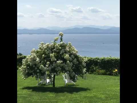 vermont---wedding-venue---lakeview-terrace-home---burlington