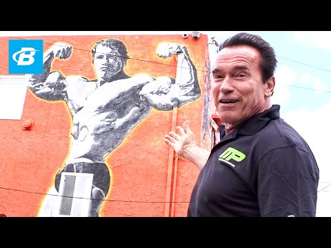 Arnold Schwarzenegger's Venice Beach Car Tour | Arnold Schwarzenegger's Blueprint Training Program