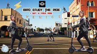 BIRD electric scooter in Los Angeles. Get a Free Ride !