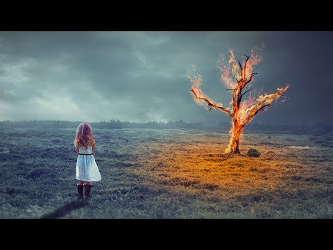 Fantasy burning tree photo manipulation | photoshop tutorial cs6/cc