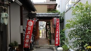 西光寺 寅薬師 京都 / Saikou-ji Temple Kyoto / 호랑이 약사 교토