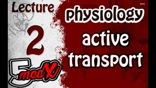 Lecture 2 physiology :active transport