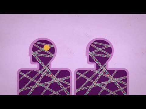 Autism Genetics Explained >> Autism Genetics Explained Spectrum Autism Research News