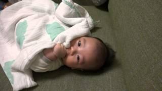 生後2ヶ月、おくるみで「いないいないばぁ(かくれんぼ)」してる赤ちゃん かわいいよ!【高画質 SONY HDR CX900で撮影】