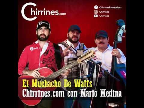 Chirrines Con Tololoche Los Angeles Riverside San Bernardino: El Muchacho De Watts - Mario Medina