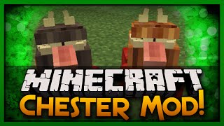 Minecraft Mod Spotlight: Chest Pets That Follow You? (Chester Mod)