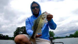 catching bass in the rain at logan martin lake mid June 2021