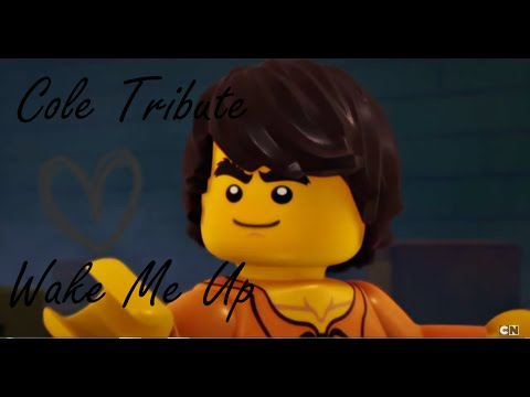 LEGO Ninjago | Cole Tribute | Wake Me Up ♪