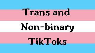 20 minutes of trans and non-binary tiktoks