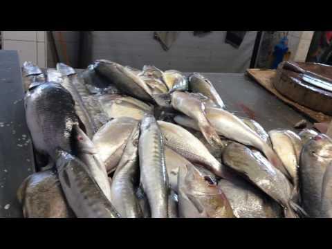 fish market Penang