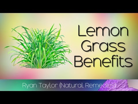 Lemongrass: Benefits and Uses