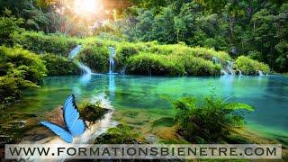 Méditation guidée ressourcement dans nature - (22 mn)