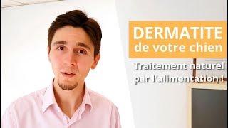 Dermatite atopique du chien : traitement naturel pour sortir de ce CERCLE VICIEUX